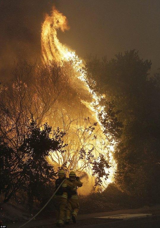 Cháy rừng ở California dữ dội nhất trong lich sử - Ảnh 8.