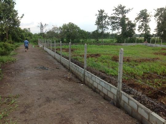 Nhà đầu tư bán tháo đất vườn vùng ven - Ảnh 1.