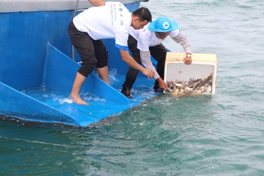 Phú Quốc thả 1 triệu con ghẹ xuống biển - Ảnh 3.