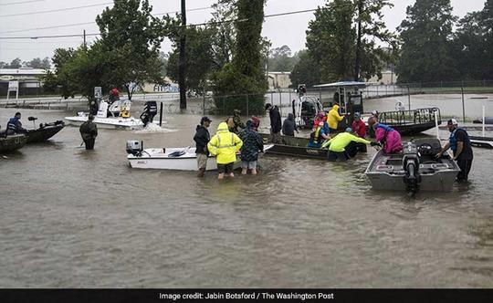 """Mỹ: """"Đảo kiến lửa"""" xuất hiện trong bão Harvey - Ảnh 4."""