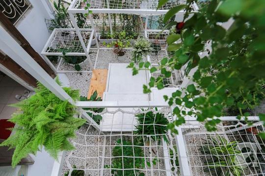 Khu vườn tuyệt đẹp có chức năng điều hoà - Ảnh 6.