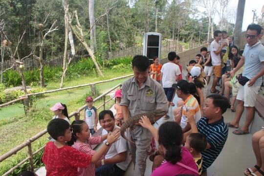 Mãn nhãn với màn biễu diễn thú ở Safari Phú Quốc - Ảnh 6.