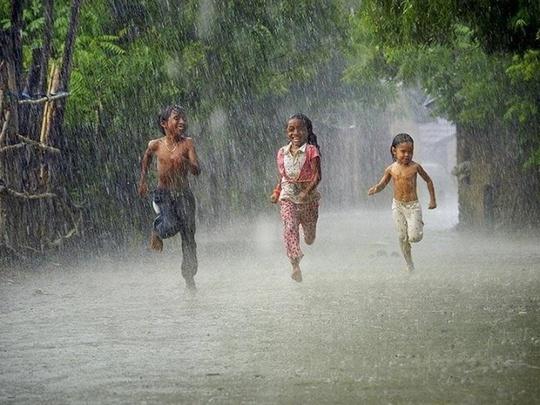 Hồi ức mùa mưa - Ảnh 2.