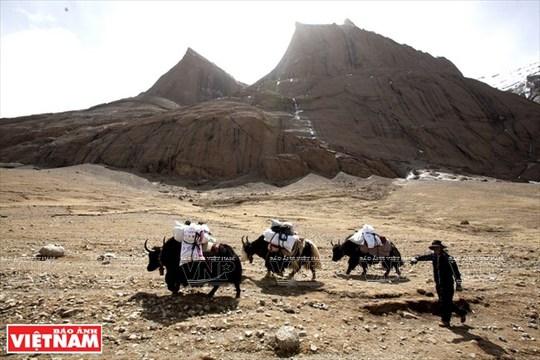 Hành trình chiêm bái ngọn núi thiêng Kailash ở Tây Tạng - Ảnh 8.
