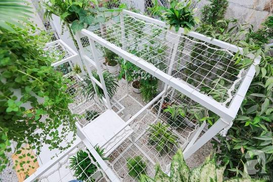 Khu vườn tuyệt đẹp có chức năng điều hoà - Ảnh 9.