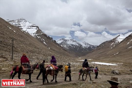 Hành trình chiêm bái ngọn núi thiêng Kailash ở Tây Tạng - Ảnh 9.