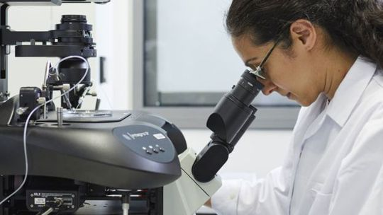 Tìm ra gen chủ giúp thai không bị sẩy - Ảnh 1.