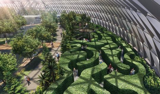 Sân bay Changi đưa thác nước, rừng nhân tạo vào nhà - Ảnh 9.