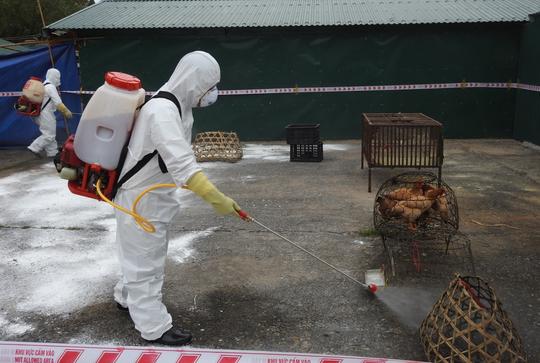 Virus cúm chết người chực chờ xâm nhập - Ảnh minh hoạ 4