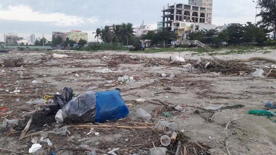 Hơn 1 km bờ biển Đà Nẵng tràn ngập hàng trăm tấn rác - Ảnh 1.