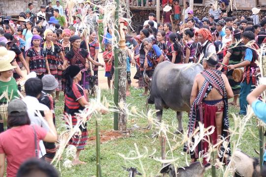 Lễ hội  độc đáo Ariêu- Ping thu hút hàng ngàn người tham dự - Ảnh 5.