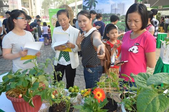 Ngày hội Nông Trại Xanh Phú Mỹ Hưng lần 2-2017 - Ảnh 1.