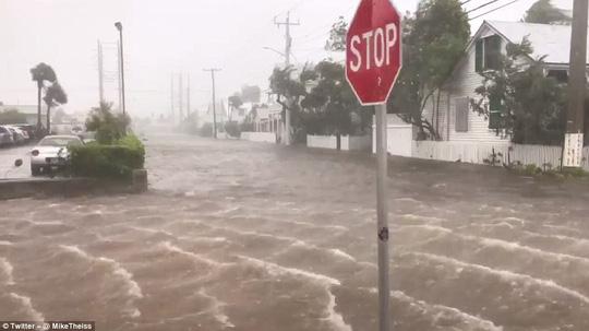 Bão Irma đổ bộ vào bang Florida - Ảnh 2.