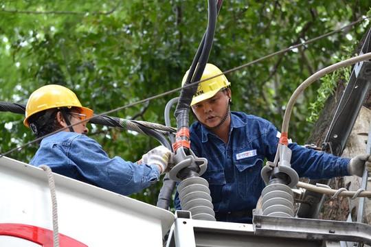 Điện lực TP HCM bảo đảm không thiếu điện trong năm 2017