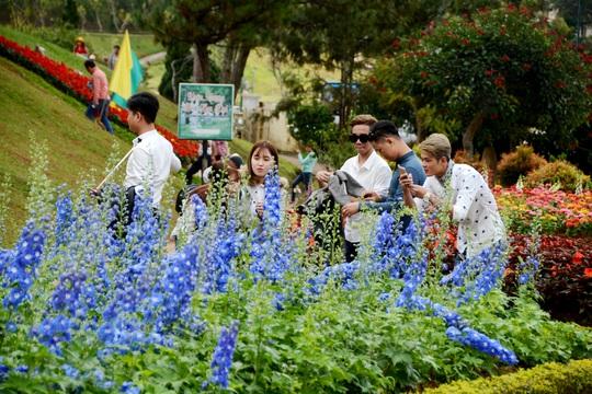 Nhiều bạn trẻ lưu lại những khoảnh khắc bên ngàn hoa Đà Lạt.