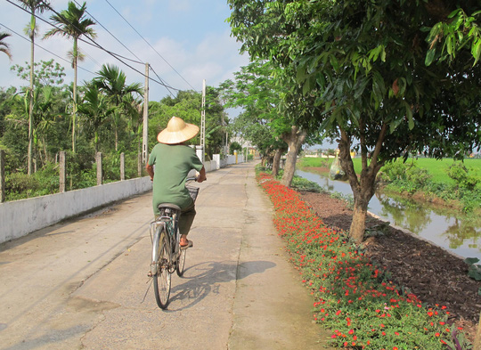 Ngỡ ngàng những con đường hoa rực rỡ làng quê miền Bắc - Ảnh 10.