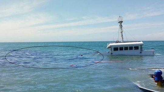 Nguy cơ tràn dầu từ tàu chìm trên vùng biển Ninh Chử - Ảnh 2.