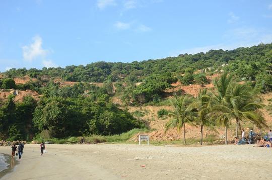 Công trình 40 móng biệt thự ở Sơn Trà đẩy bùn đất xuống biển - Ảnh 5.