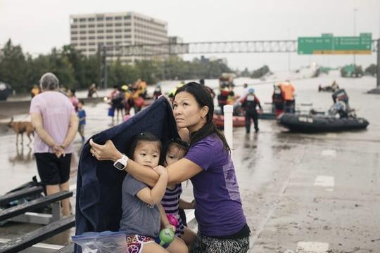 Hình ảnh người Việt trong mưa bão Harvey - Ảnh 5.