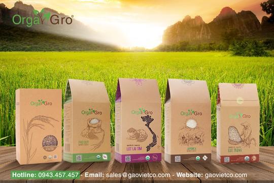 Gạo hữu cơ Orgagro - Sản phẩm vì sức khỏe người Việt - Ảnh 3.