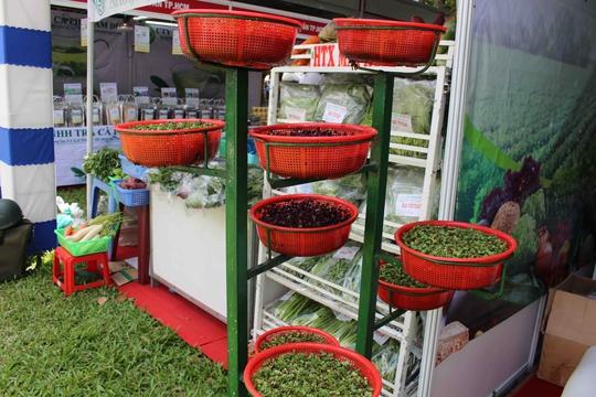 Mô hình trồng rau hữu cơ kiểu mới dạng tháp đơn giản, đẹp mắt, tiết kiệm không gian, được chị Hoa trưng bày giới thiệu với người tiêu dùng và tìm cơ hội kinh doanh.