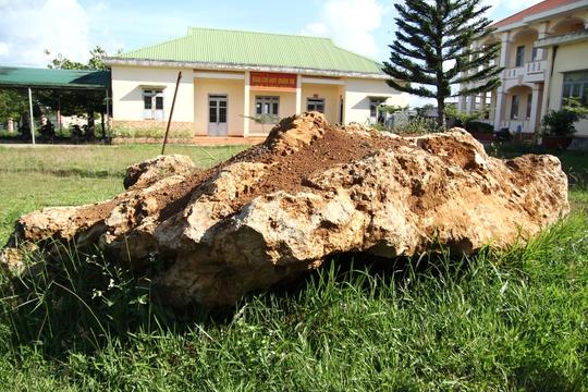 Bàn giao tảng đá bán quý 20 tấn về khu dự trữ sinh quyển Langbiang - Ảnh 1.