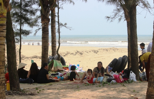 Nhiều người dân lân cận thành phố Sầm Sơn cũng về du lịch tranh thủ nghỉ trưa dưới tán dừa, phi lao