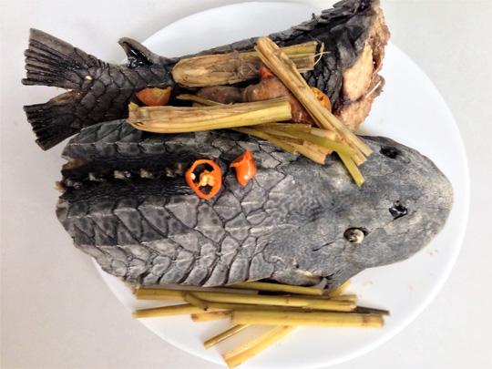 Cá lau kính hấp sả: Món khoái khẩu của dân nhậu - Ảnh 1.
