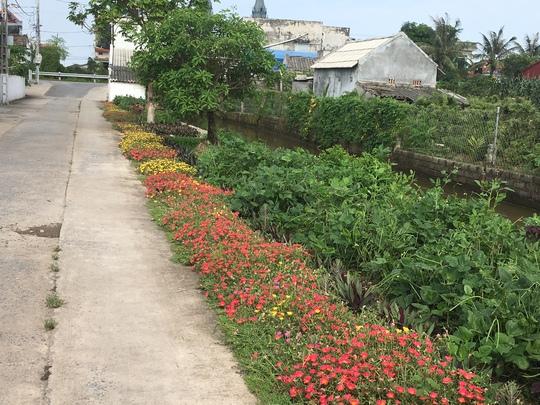 Ngỡ ngàng những con đường hoa rực rỡ làng quê miền Bắc - Ảnh 25.
