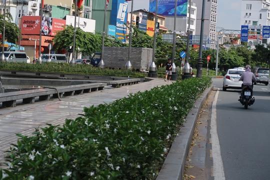 Bị đâm chết khi xin đểu ở công viên Hoàng Văn Thụ - Ảnh 1.