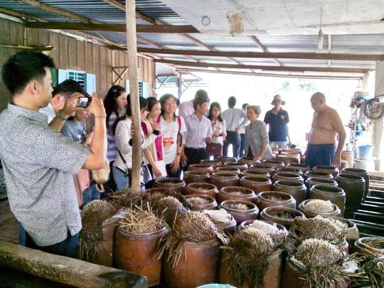 Nông nghiệp gắn với homestay trên quê hương Bác Tôn - Ảnh 4.