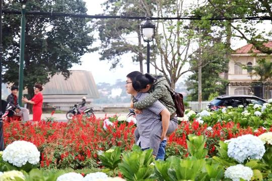 Cặp đôi lãng mạn bên ngàn hoa đặc sản của TP Đà Lạt dịp này.