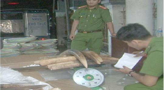 Chiến sĩ biên phòng tham gia vận chuyển lậu gần 1,5 tấn ngà voi - Ảnh 1.