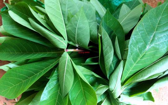 Canh rau sắn nấu cá: Đặc sản miền trung du Phú Thọ - Ảnh 2.