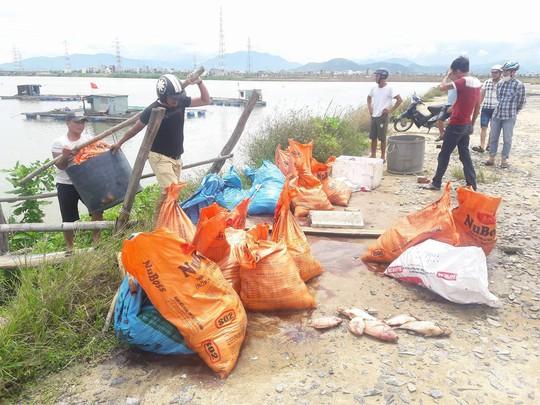 Đà Nẵng: Hơn 20 tấn cá nuôi chết hàng loạt chưa rõ nguyên nhân - Ảnh 4.