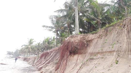 Chùm ảnh: Bờ biển Cửa Đại tan hoang hơn 2 km - Ảnh 10.