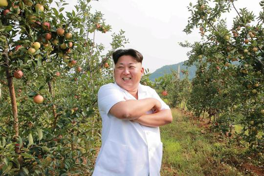 Triều Tiên cho du khách lên bờ, xuống ruộng - Ảnh 3.