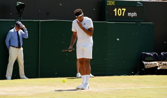 Wimbledon khổ vì kiến cánh - Ảnh 6.
