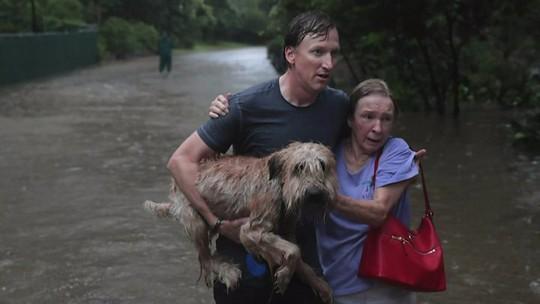 Sao Mỹ dốc sức vì nạn nhân bão Harvey - Ảnh 3.