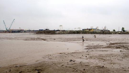 Cá lác có chất lượng thịt thơm ngon, giá cao nên nhiều người dân các xã, phường ven biển của huyện Thủy Nguyên và Hải An chọn bãi sình lầy - nơi loại cá này sinh sống - để hành nghề mưu sinh.