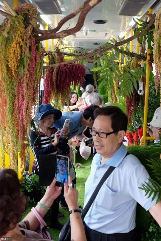 Đài Bắc thử nghiệm xe buýt rừng xanh - Ảnh 2.
