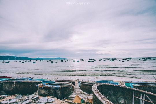 Sướng mắt với biển, đá và cua ở cù Lao Câu - Ảnh 2.