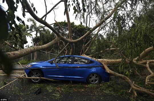 Phi công liều lĩnh lái máy bay xuyên bão Irma - Ảnh 2.