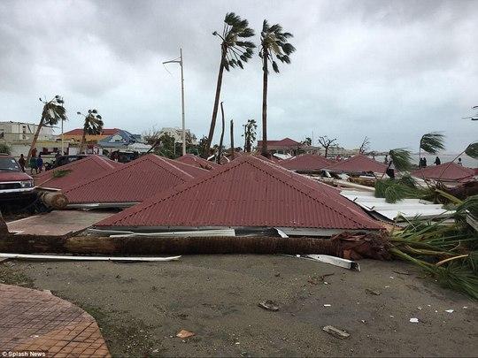 Phi công liều lĩnh lái máy bay xuyên bão Irma - Ảnh 4.