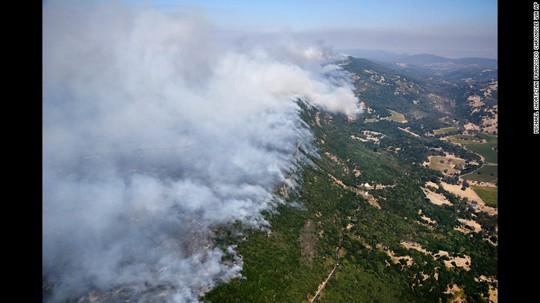 Cháy rừng California: Chỉ còn tro và xương - Ảnh 5.