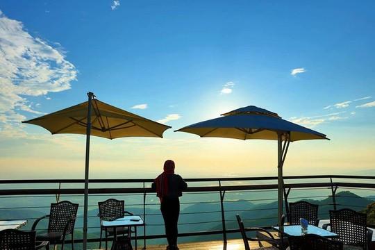Ngồi nhâm nhi tách café, ngắm nhìn Tam Đảo từ trên cao, hít hà từng luồng gió se lạnh, bạn sẽ thấy thật thư giãn
