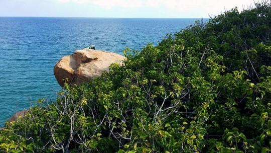Trải nghiệm cuộc sống hoang dã trên đảo Cù Lao Câu - Ảnh 13.