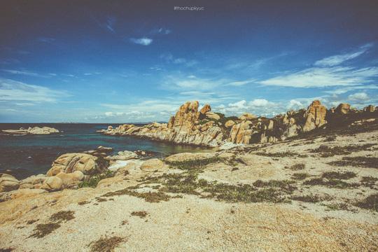 Sướng mắt với biển, đá và cua ở cù Lao Câu - Ảnh 16.