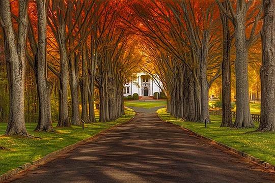 Lạc lối trong khuôn viên trường đại học rộng nhất thế giới - Ảnh 18.