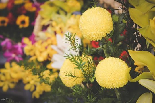 Sắc màu bình dị tại chợ hoa lớn nhất Sài Gòn - Ảnh 19.
